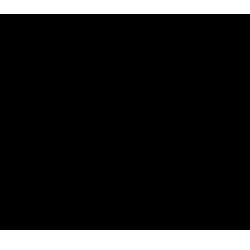 Diesel Spare Parts logo